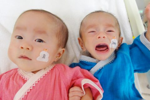 低出生体重児で生まれた双子の早産児